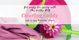 A pretty diy cleaning caddy
