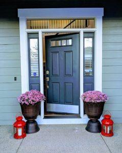 front door spring door